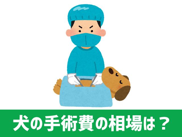 dog_operation_2