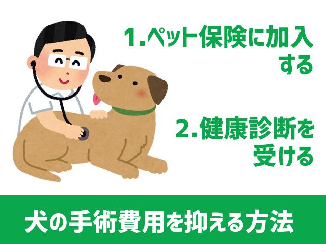 dog_operation_4